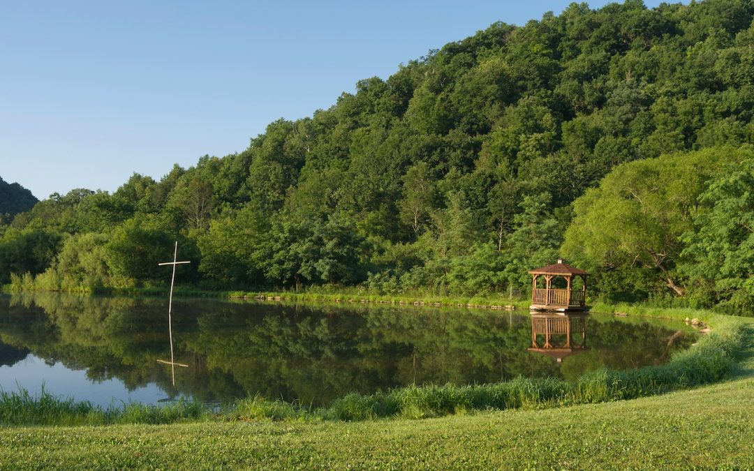 Camp: A Calm Port in the COVID-19 Storm